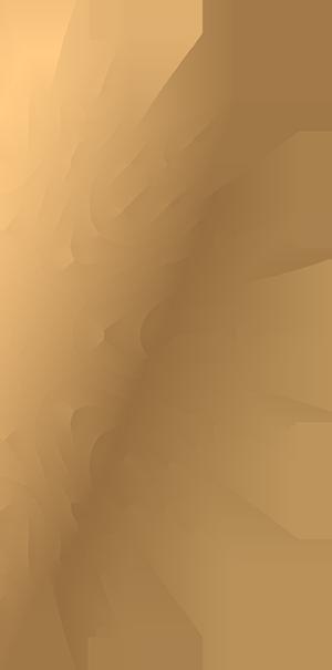 Bans und Bans Mandala gold logo